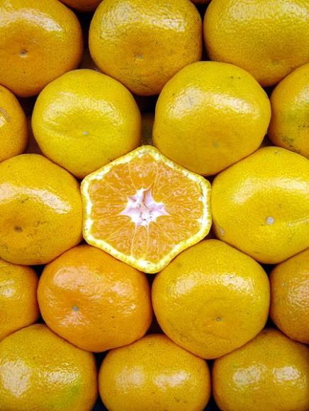 450px-Naranjas_-_Oranges