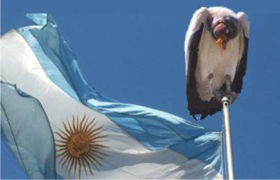 buitre-y-bandera-argentina